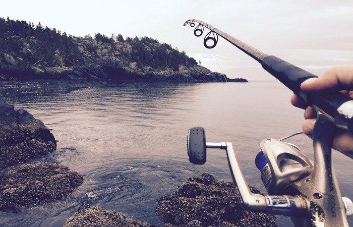 aliexpress cañas de pescar